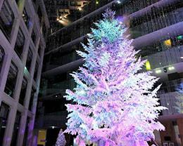 【クリスマスにおすすめ一覧】クリスマスの時期にピッタリなイルミネーションはこちら!他のシチュエーションでも探せる
